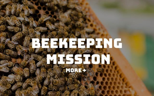 Congo Foundation - beekiping mission
